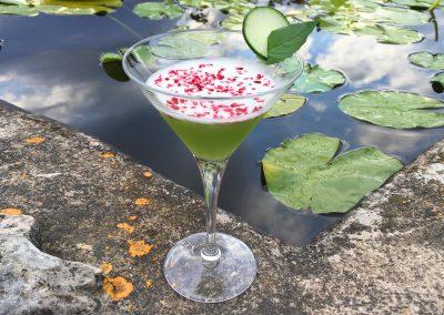 Cocktail Basilic Smash
